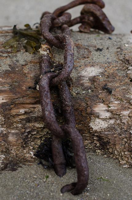 20120602-saar_dries-010