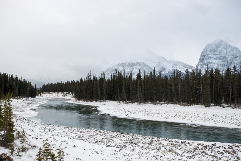 jasper river freezing shut alberta photo