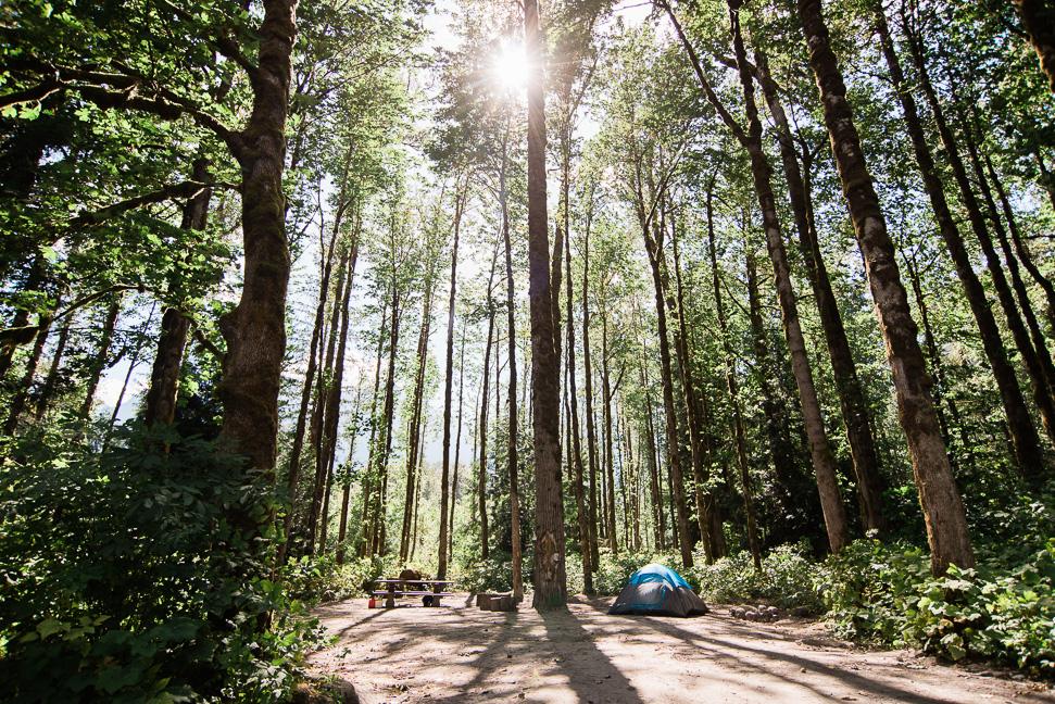 squamish-river-camping-site