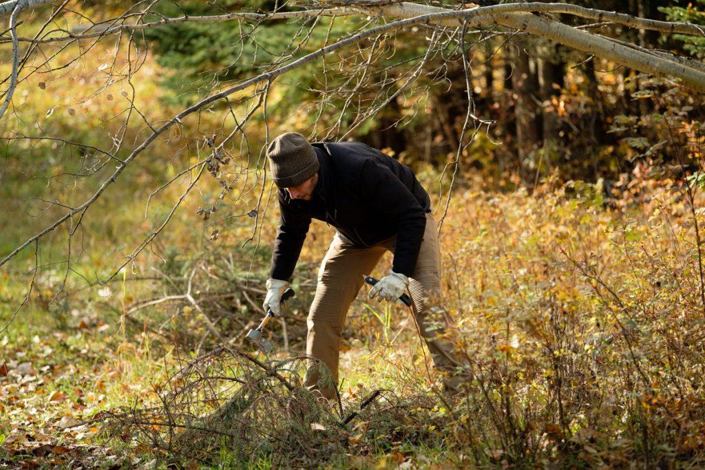 Horsefly chopping wood